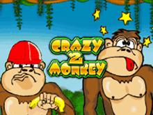 Crazy Monkey 2 в казино Вулкан