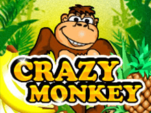 Crazy Monkey в Вулкан онлайн без СМС