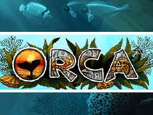 Бесплатный игровой автомат Orca в Вулкан
