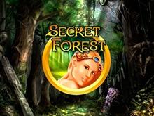 Онлайн автомат Secret Forest