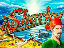 Онлайн игра Sharky в Вулкан